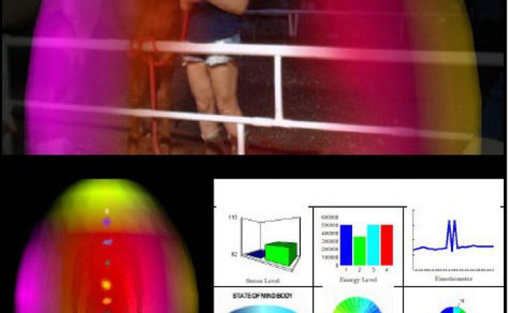 השפעת אנרגיית הסוסים על ההילה -השדות האלקטרומגנטיים של האדם והסוס