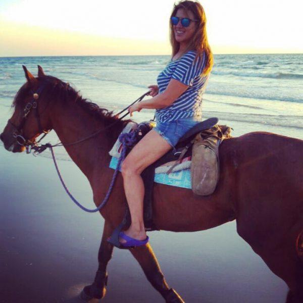 סוסים יודעים את הדרך הביתה