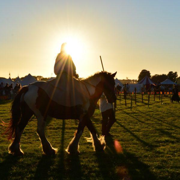 הקשר המיוחד בין אנשים לסוסים